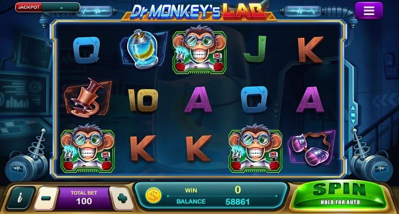 Monkeys Lab